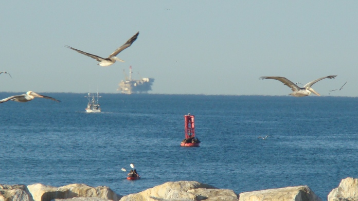 DSC02385 Kayaking Sea Lion Buoy Oil Rig Boat Pelicans Favorite